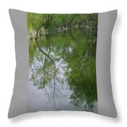 Green Peace - Trees Reflection Throw Pillow