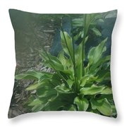 Green Plant And Pink Flowers  Throw Pillow