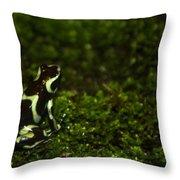 Green Poison Dart Frog Throw Pillow