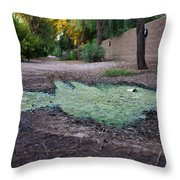 Green Puddle Throw Pillow