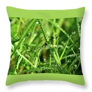 Green Rain Throw Pillow