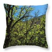 Green Reach Throw Pillow