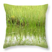 Green Reflections Throw Pillow