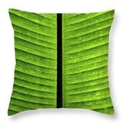 Green Ribs Throw Pillow