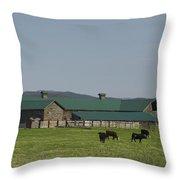Green Roof  Throw Pillow