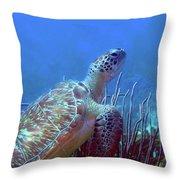 Green Sea Turtle 3 Throw Pillow