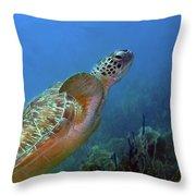 Green Sea Turtle 4 Throw Pillow