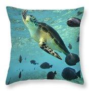 Green Sea Turtle Balicasag Island Throw Pillow