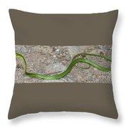 Green Snake Throw Pillow