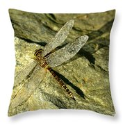 Green Spotted Dragonfly 1 Throw Pillow