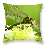 Green Spotted Dragonfly 2 Throw Pillow