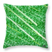 Green Streak Throw Pillow