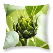Green Sunflower Bud Throw Pillow