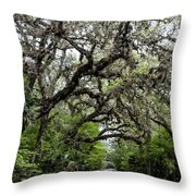 Green Swamp Oak Bower Throw Pillow