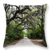 Green Swamp Tunnel Throw Pillow