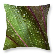 Green Ti Leaves Throw Pillow