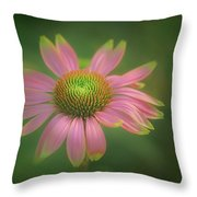 Green Tipped Coneflower Throw Pillow