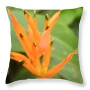 Green Tipped Throw Pillow