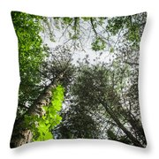 Green To The Sky Throw Pillow