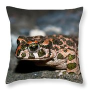 Green Toad Throw Pillow