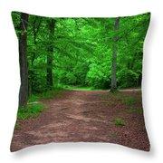 Green Trail Throw Pillow