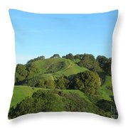 Green Trail Throw Pillow