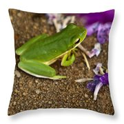 Green Tree Frog And Flowers Throw Pillow