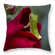 Green Tree Frog And Red Roses Throw Pillow