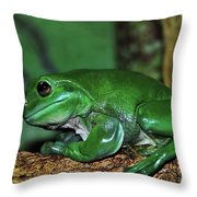 Green Tree Frog With A Smile Throw Pillow