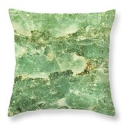 Green Turtiuus Throw Pillow