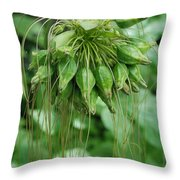 Green Vines Throw Pillow