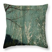 Green Wall Abstract Throw Pillow