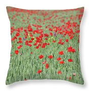 Green Wheat And Red Poppy Flowers Field Throw Pillow
