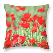 Green Wheat And Red Poppy Flowers Throw Pillow