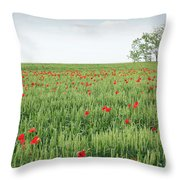 Green Wheat Field Spring Scene Throw Pillow