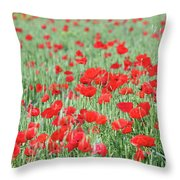 Green Wheat With Poppy Flowers Throw Pillow