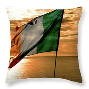Flag Of Ireland At The Cliffs Of Moher Throw Pillow