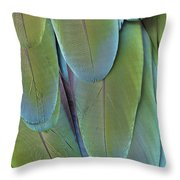Green-winged Macaw #4 Throw Pillow