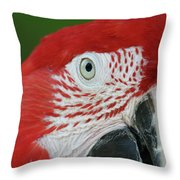 Green-winged Macaw Close Up Throw Pillow
