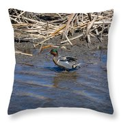 Green-winged Teal 7 Throw Pillow
