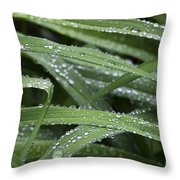 Green With Rain Drops Throw Pillow