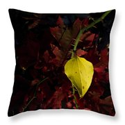 Greenbriar Leaf In Evening Sun Throw Pillow
