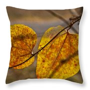 Greenbrier Glow Throw Pillow