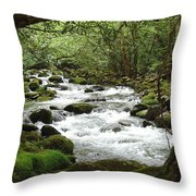 Greenbrier River Scene 2 Throw Pillow