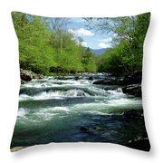 Greenbrier River Scene Throw Pillow
