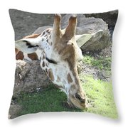 Greener Grass Throw Pillow