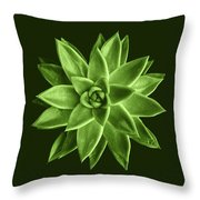 Greenery Succulent Echeveria Agavoides Flower Throw Pillow