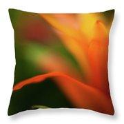 Greenhouse Heat Throw Pillow