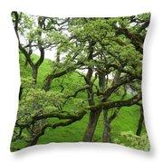 Greening Up Throw Pillow