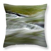 Greens Of Summer Throw Pillow